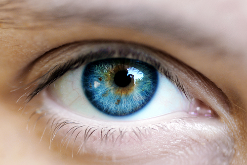 Biophotons: The Human Body Emits, Communicates with, and is Made from Light See-eye-to-eye