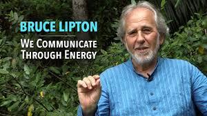 Bruce Lipton We Communicate Through Energy