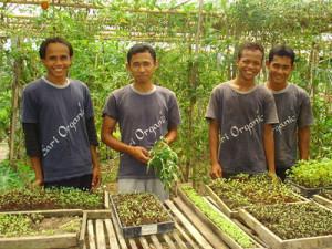 OrganicFarmers