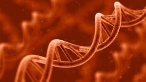 genetics-640x360.jpg