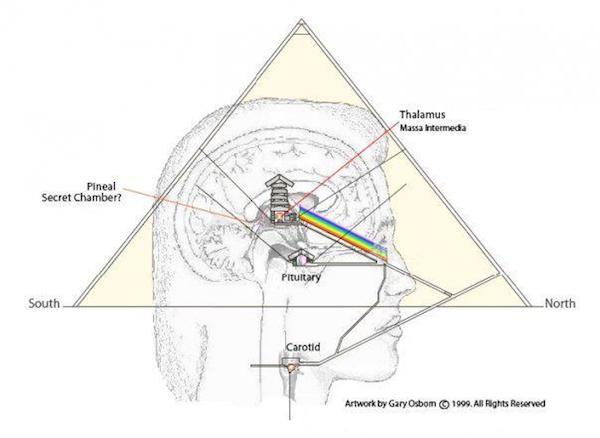 Pineal-pyramid.jpg