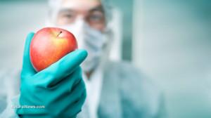 Doctor-Surgeon-Mask-Glove-Fruit-Apple.jpg
