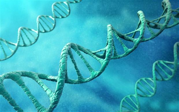 Junk-DNA-Our-Interdimensional-Doorway-to-Transformation.jpg