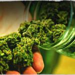 MedicinalMarijauna-cannabis.jpg