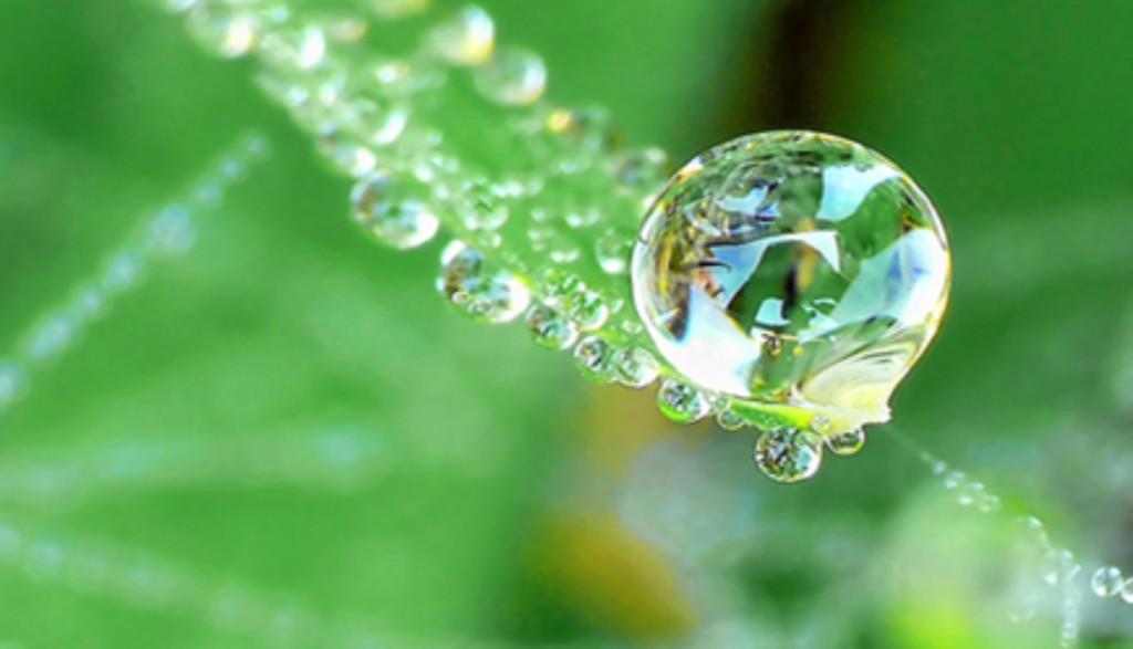 water-drop-1160x665.jpg