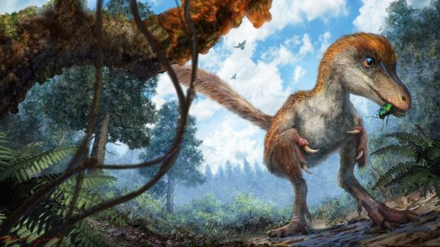 Artist's impression: the dinosaur was about the size of a sparrow