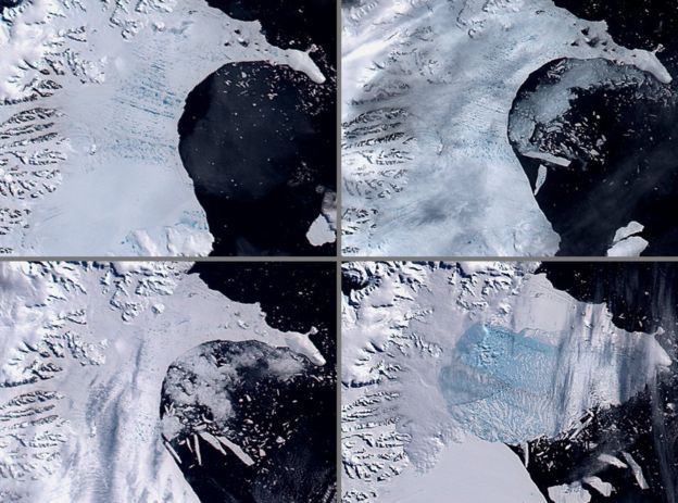 The collapse of the Larsen B ice shelf which occurred in 2002 followed on from a large rift calving event