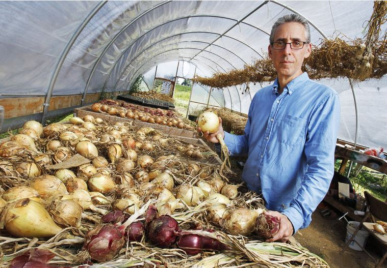 Dr. Ron Weiss is seen in his hoop house with onions that are curing on the historic 348 acre Ethos Health community supported agriculture farm that Dr. Ronald Weiss purchased in Long Valley, where he will be integrating the food grown on the farm into his medical practice. Jerry McCrea/The Star-Ledger