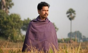 Sumant Kumar in his rice field Credit – The Guardian Read More: http://www.trueactivist.com/indias-organic-rice-revolution-proves-gmos-are-unnecessary/
