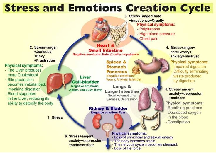 emotion-cycle