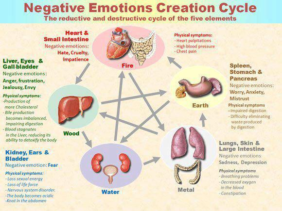 negative_emotions_cycle
