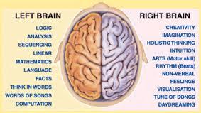 right-left brain