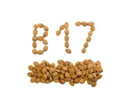 The Forbidden Vitamin B15