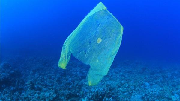 Plastic-bottles-in-the-ocean1-e1485284683172