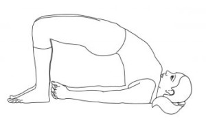 Reconnect-Ancient-Indian-Holistic-Wisdom-Cause-Obesity-Weight-setu-bandhasana-350x216
