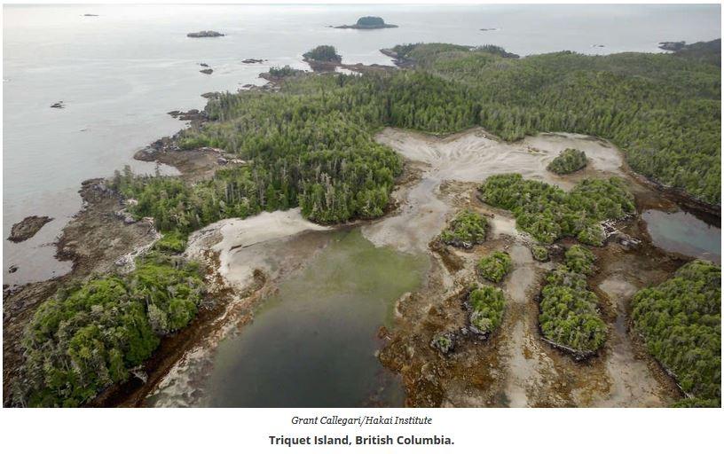 triquet island
