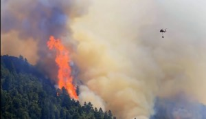 burn Norther CA