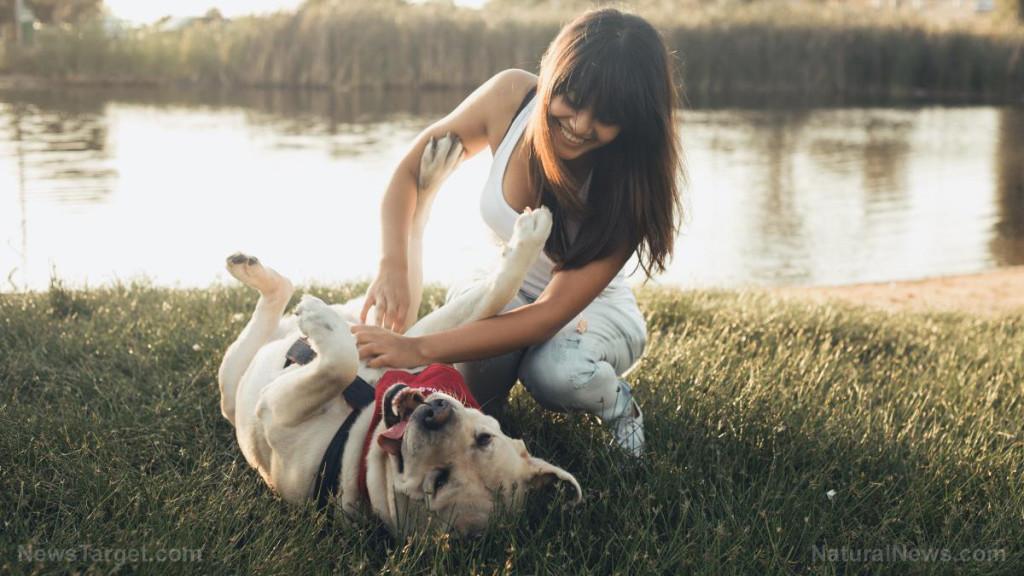 Dog-Woman-Pet-Friend-Park-Love-Young