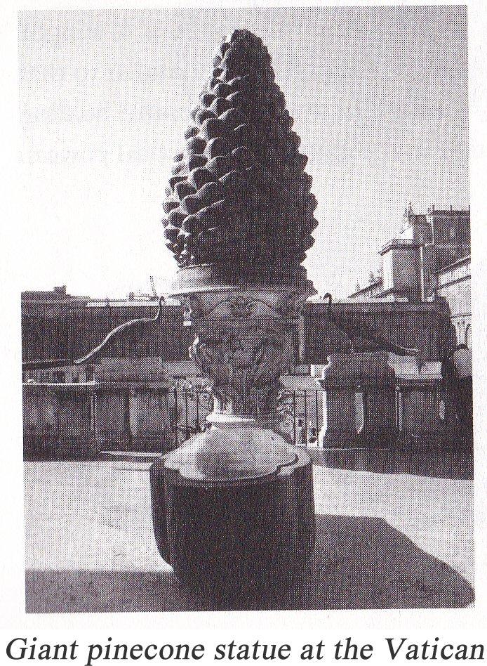 giant-pinecone