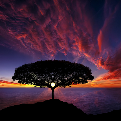 Rumi-Image-Tree-of-Life-Bess-Hamiti